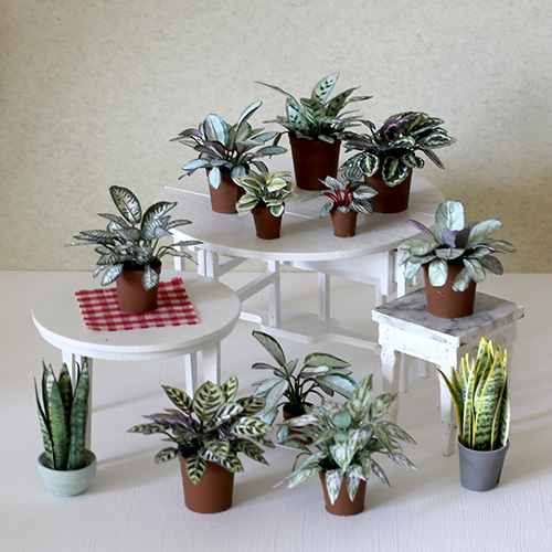 Dollhouse plants - DIY tutorial by Annie's Granny